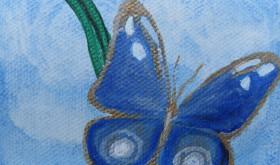 butterfly tiny blue_5843