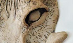 Warthog ear Robyn Beattie