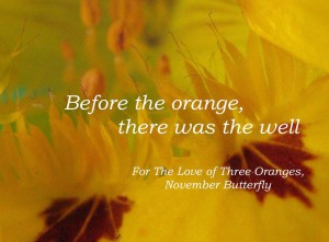 Beattie & Pryputniewicz 3 Oranges November Butterfly