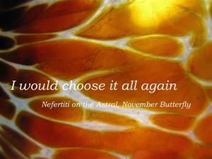 Beattie & Pryputniewicz Nefertiti November Butterfly
