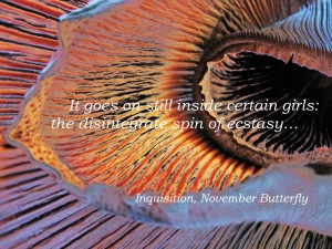 Beattie and Pryputniewicz, Inquisition, November Butterfly