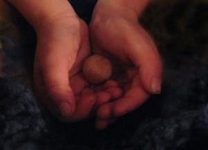 Heart Seed Robyn Beattie