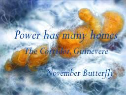Beattie & Pryputniewicz Guinevere's Corridor November Butterfly