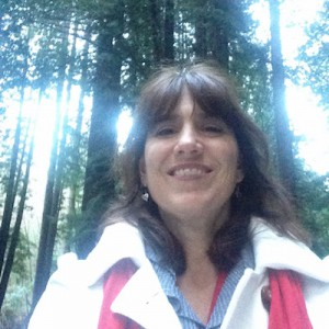 heart home joy Tania's redwoods quest 2016 copy