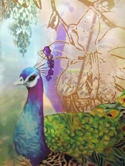 Peacock by Robyn Beattie